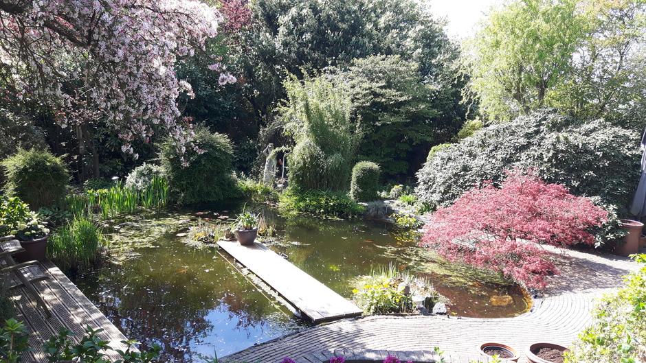 Mooi tuin weer