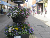 Exmouth in bloom on an Easter Saturday afternoon in town.