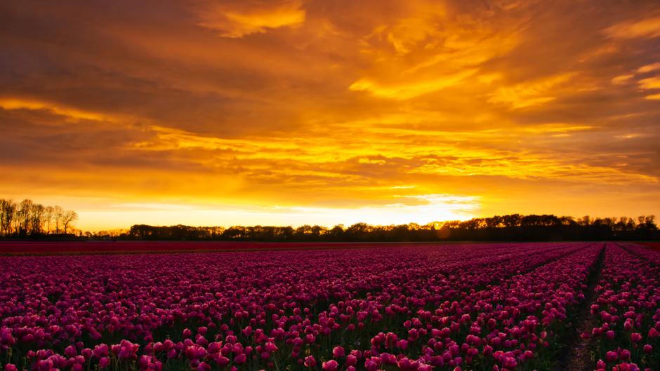 Fantastische zonsondergang