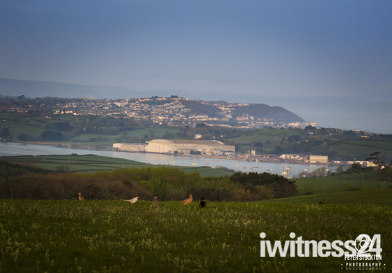 the late appledore shipyard in the distance