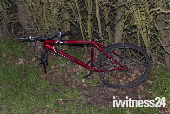 Beloved bicycle