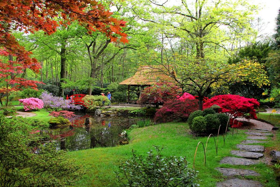groeizaam weer...lentebloeiers
