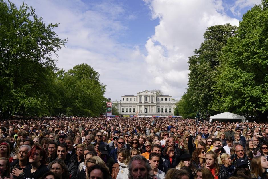 Zonnetje bij Bevrijding's pop in Haarlem