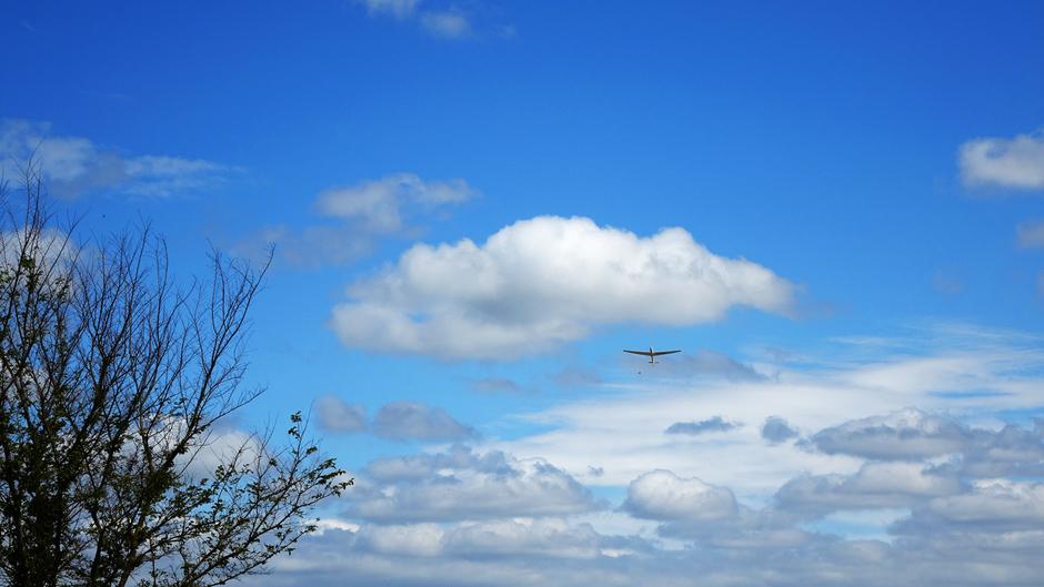 Zweefvliegen