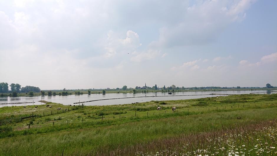 Weerfoto langs de Lek bij Everdingen