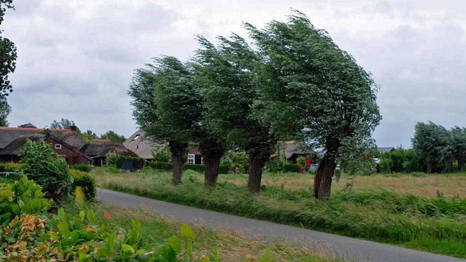 Windkracht 6 in Sint Jansklooster