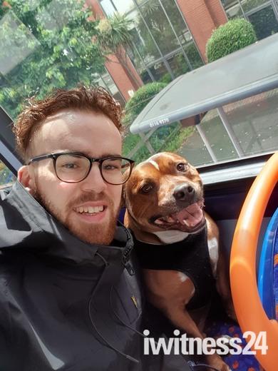 Happy dog happy life