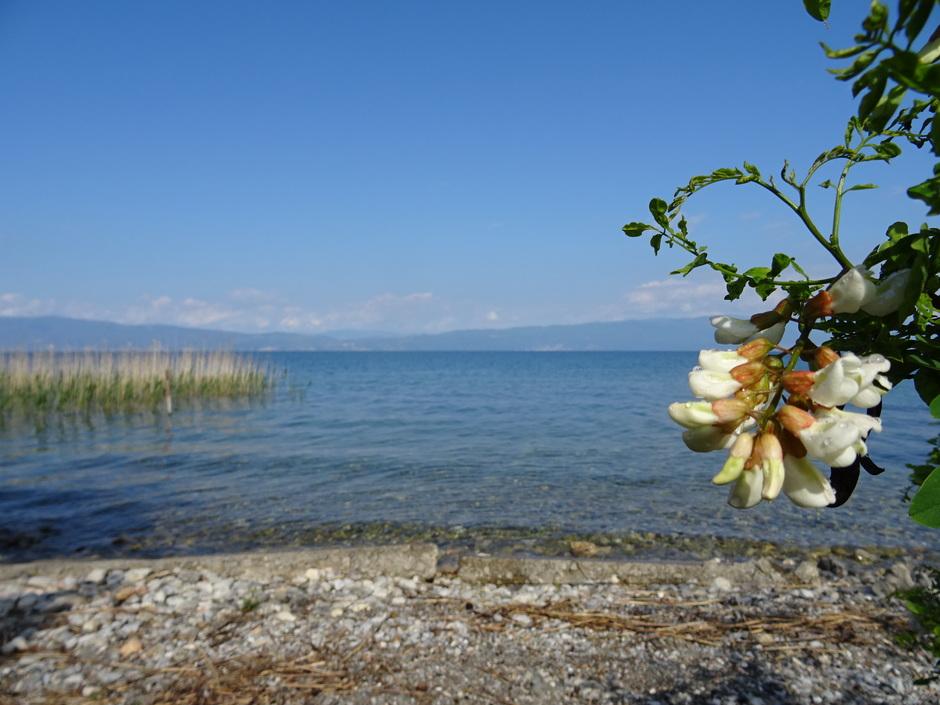 """Het """" Meer van Ohrid """" in Noord-Macedonie"""