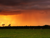 Storm at sunset