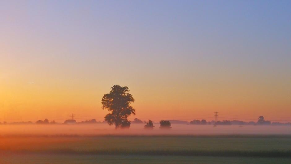 Mooie kleuren en mist