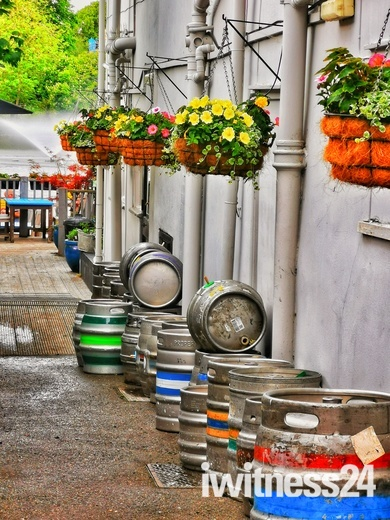 Colourful flowers and barrels