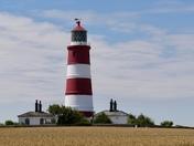 Capture Norfolk