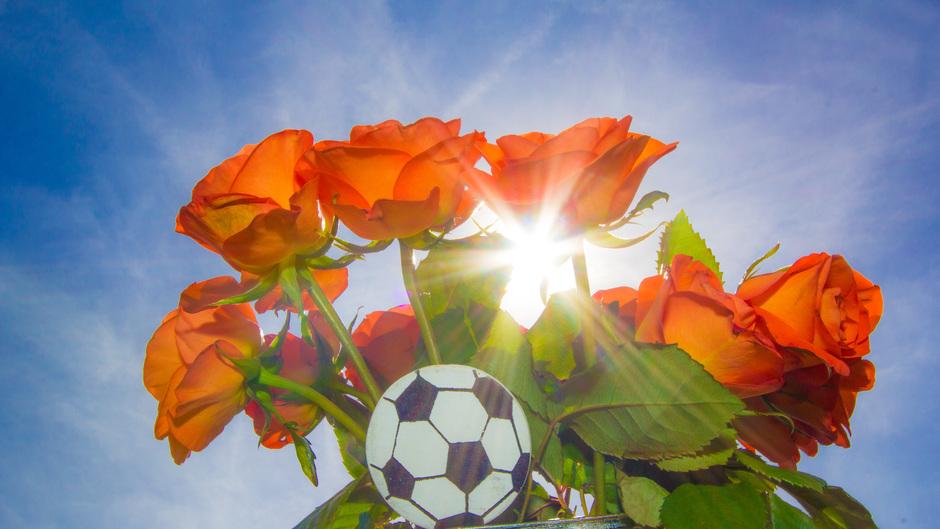 Hoop op een Oranje zonnetje vandaag