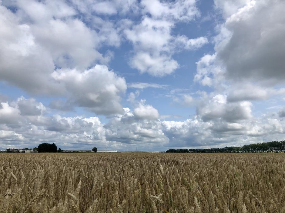 Wolken en zon en veel wind