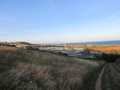 Evening sunlight on Devon Cliffs
