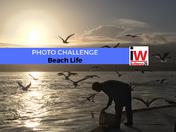 PHOTO CHALLENGE: Beach Life