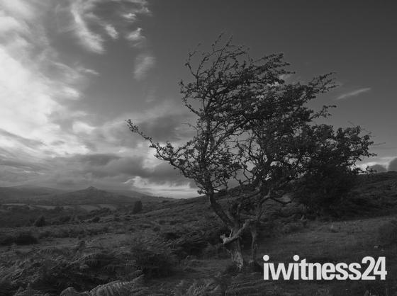 Dartmoor on a summers evening