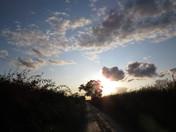 Evening sky over Cransford.
