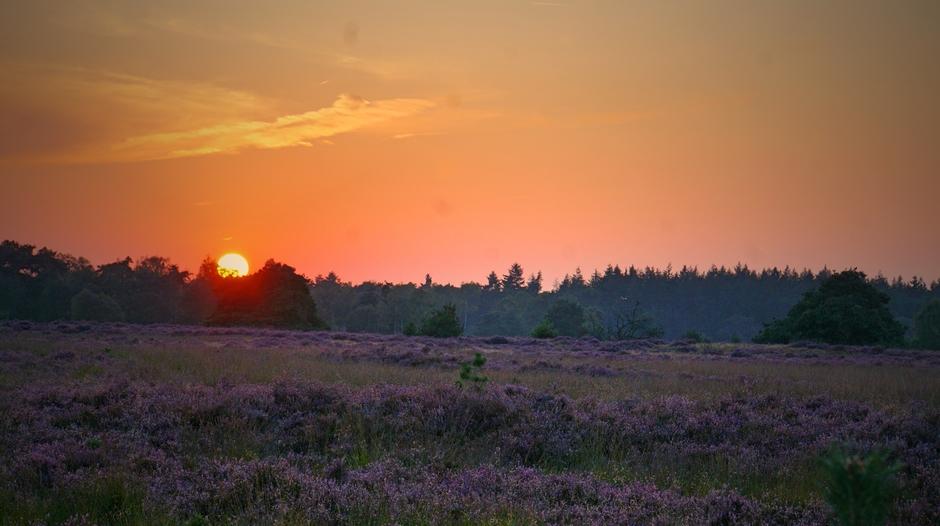Vanavond een mooie zonsondergang op de Strabrechtse Heide