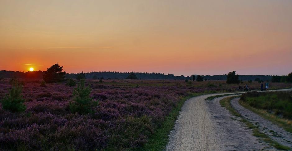 Zonsondergang vanavond op de Heide