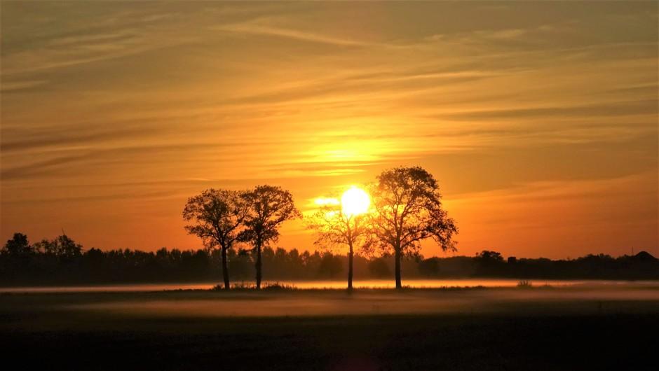 Een frisse zonopkomst met nevel boven de velden deze zondagmorgen..