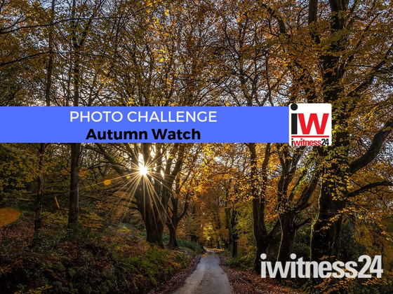 PHOTO CHALLENGE: Autumn Watch