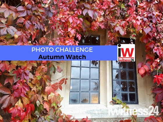 PHOTO CHALLENGE: Autumn Watch