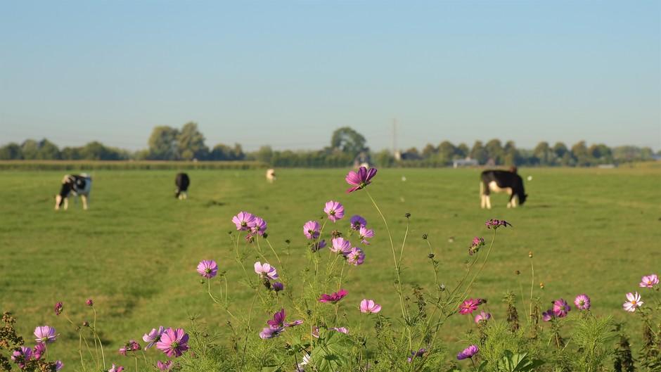 Mooie 21 september dag op het platteland