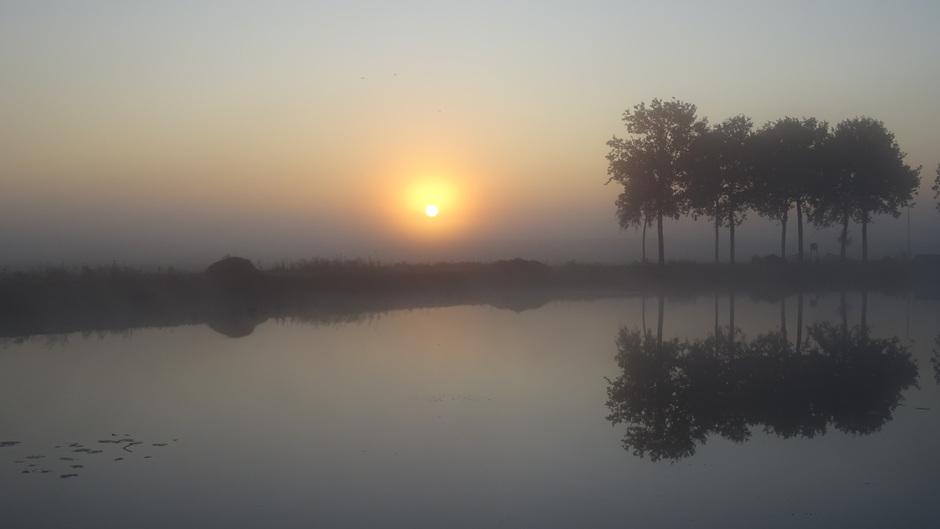 Mooi mistig vanochtend bij zonsopkomst