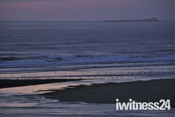 Coquet Island at dawn