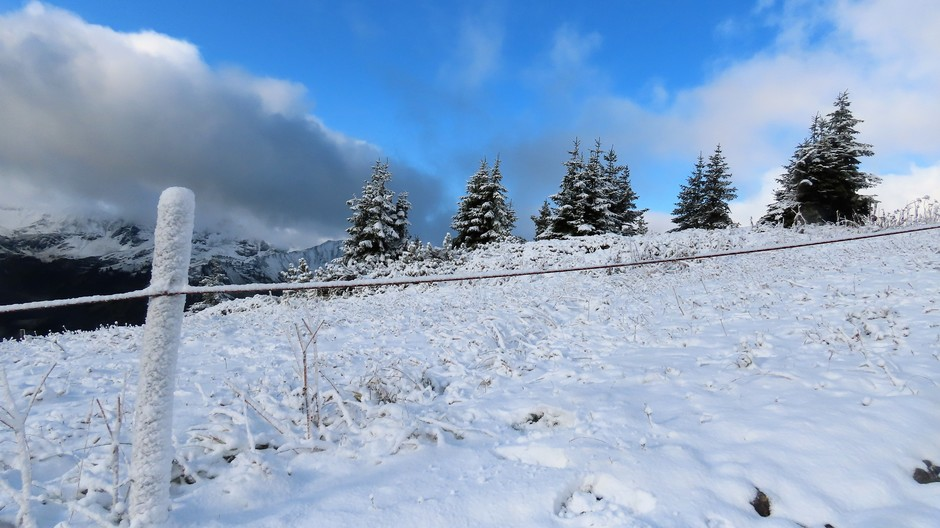 Alpen: winters in de bergen