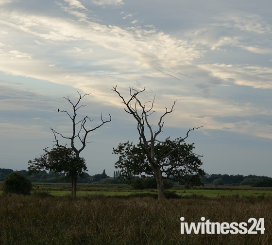 Autumn at Carlton Marshes