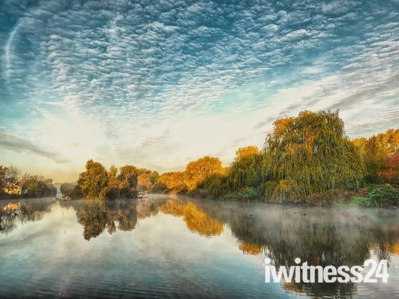 Misty morning at Harrowlodge Park