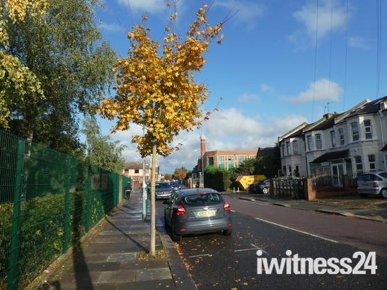 Autumn scene in Albert Road