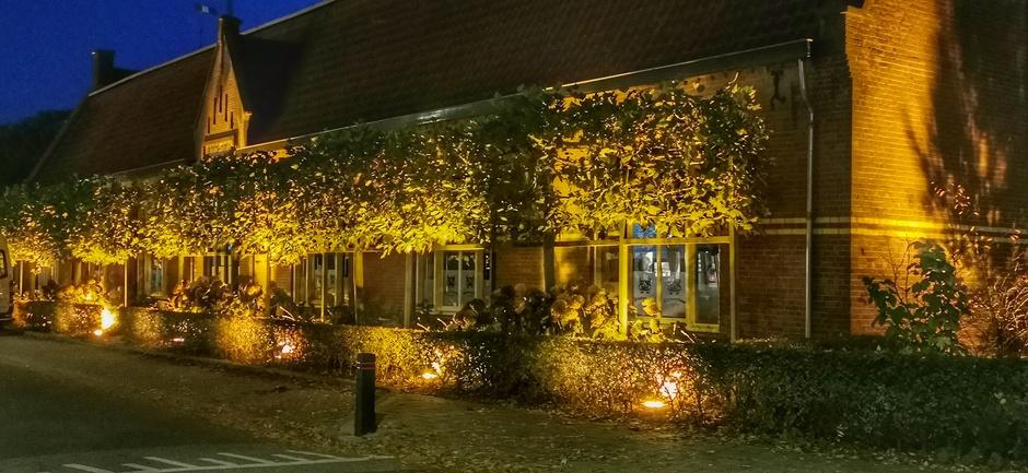 Het lijkt nu al wel Kerst met de lichten op de gele blaadjes aan de bomen