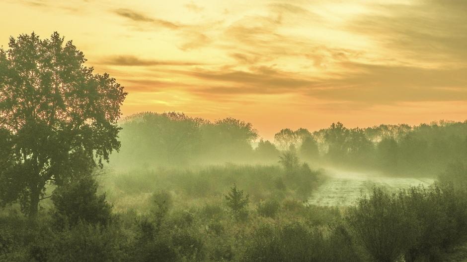 Mist, grondvorst, en de zonsopkomst.