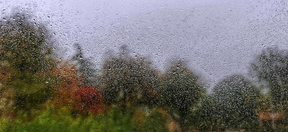 Regen en motregen vandaag