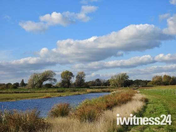 Carlton Marshes