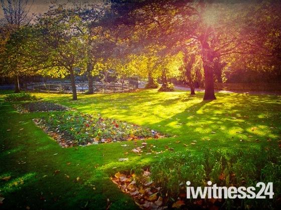 Glorious Autumn Colours…