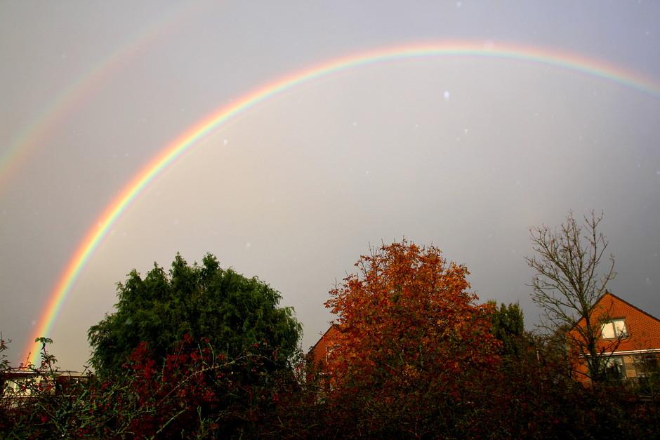 felle regenboog