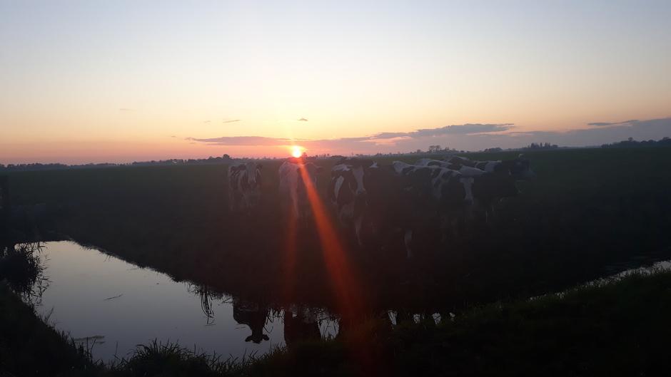 Ondergaande zon in Oldehove