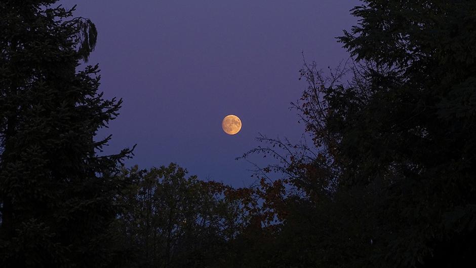 Maanopkomst samen met zonsondergang
