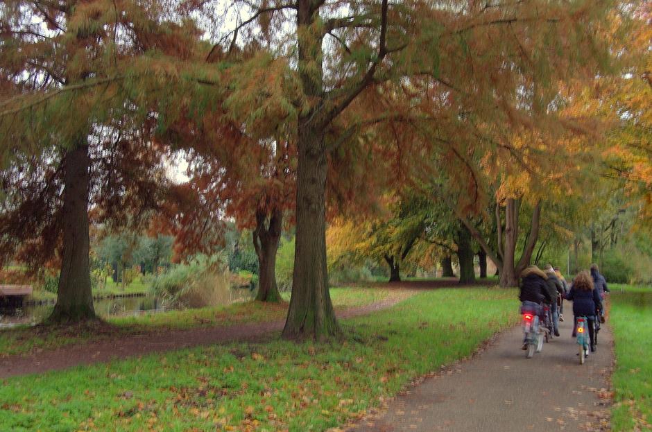 Herfst en koud in Gouda!