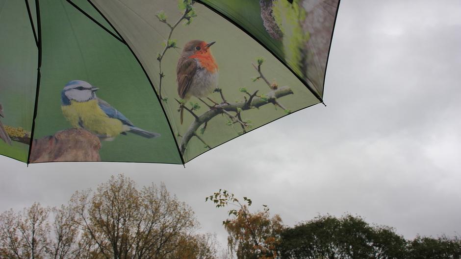 Grijs, wind en regen, parapluutjesweer.