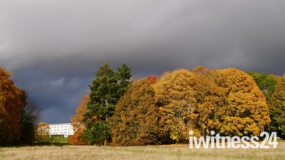 Storm Brewing at the UEA