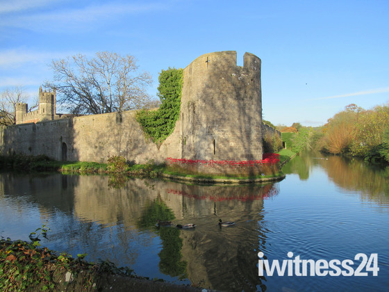 Wells Bishops Palace Remembrance Poppies on Display
