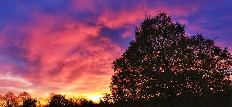 Heerlijke ochtendkleuren