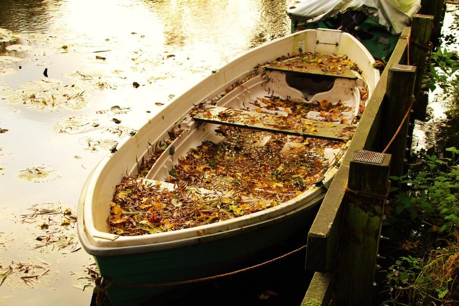 Boot met herfstbladeren