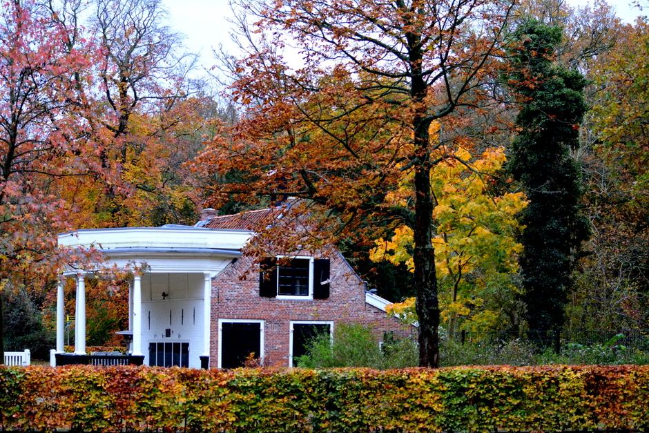 herfstkleuren de laatste bladeren