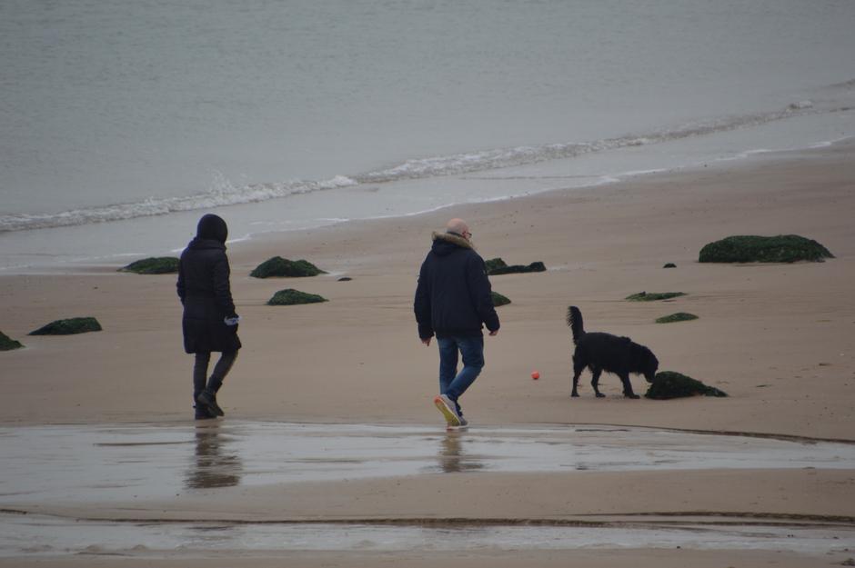 frisjes op het strand